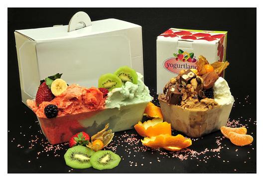 contenitori per gelato e articoli per gelateria