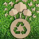 Imballaggi in cartone sostenibili: Comieco premia le innovazioni