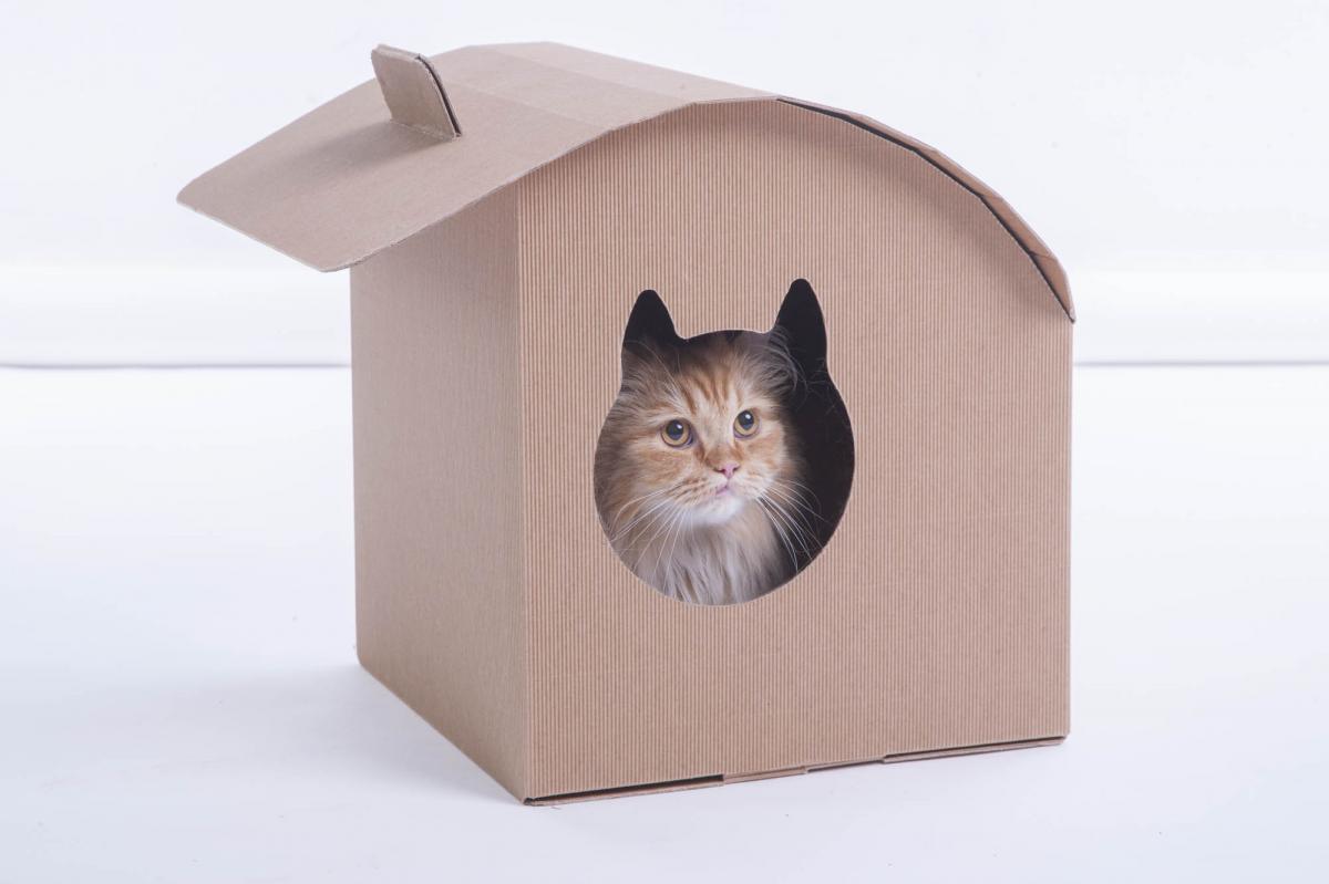 Cuccia Gatto Fai Da Te casetta per gatti in cartone pieghevole | cartotecnica