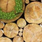 Imballaggi in legno: prospettive e iniziative della filiera