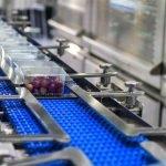 Ispezione e controllo qualità alimentare