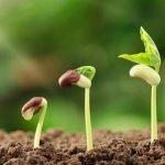 B/OPEN 2020: dall'agricoltura al packaging l'inarrestabile evoluzione green