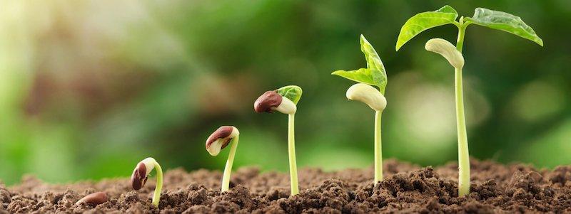 agricoltura biologica fra i focus di B/OPEN evento fieristico