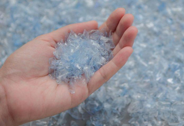 Ricircola, progetto UNIBO per l'ottimizzazione delle vaschette alimentari in plastica